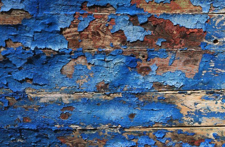 Gdzie można nabyć najlepsze farby do malowania ścian wewnętrznych?